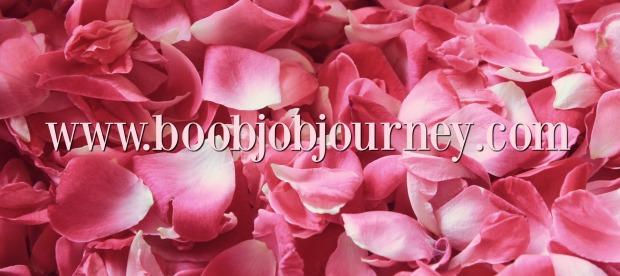 rose-petals-1155147_1920